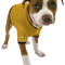 Star Trek The Original Series Uniform Dog Shirts