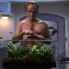 PITAQ – Star Trek Enterprise – Doctor Orders