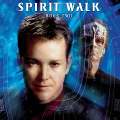 Voyager's Continuing Missions – Spirit Walk: Enemy of my Enemy
